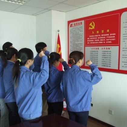 达力普公司党员重温入党誓词