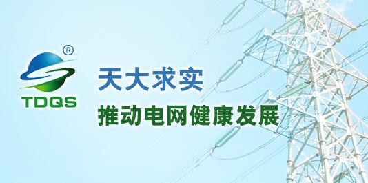 天津天大求实电力新技术股份有限公司