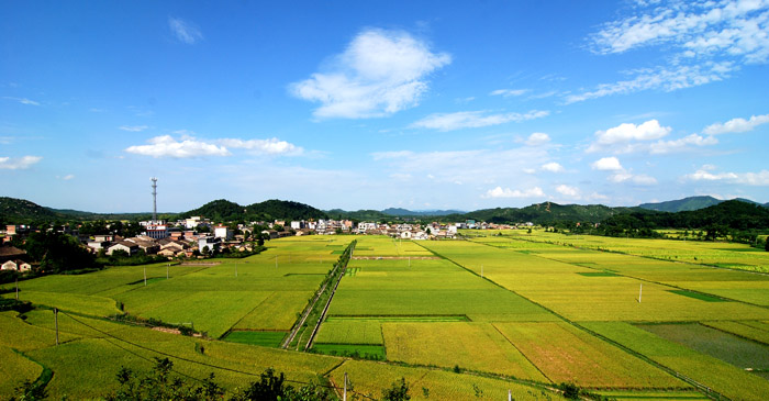 江西吉安县里田风景