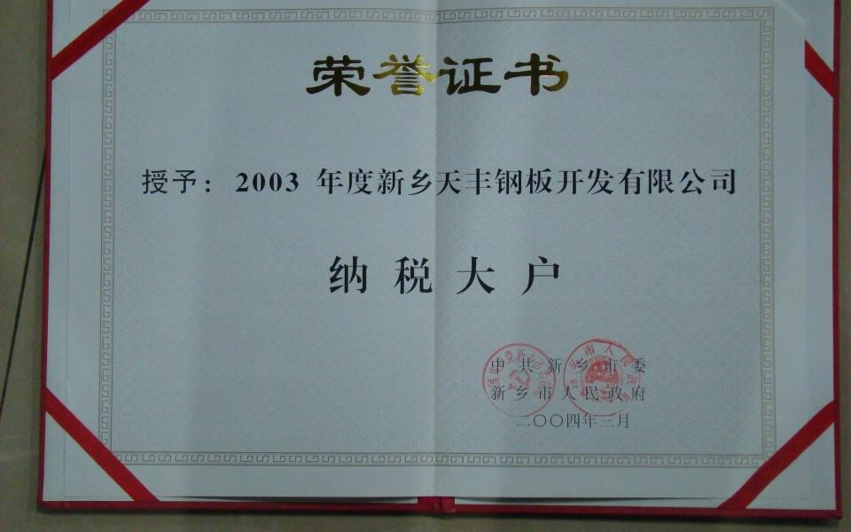 2003年纳税大户