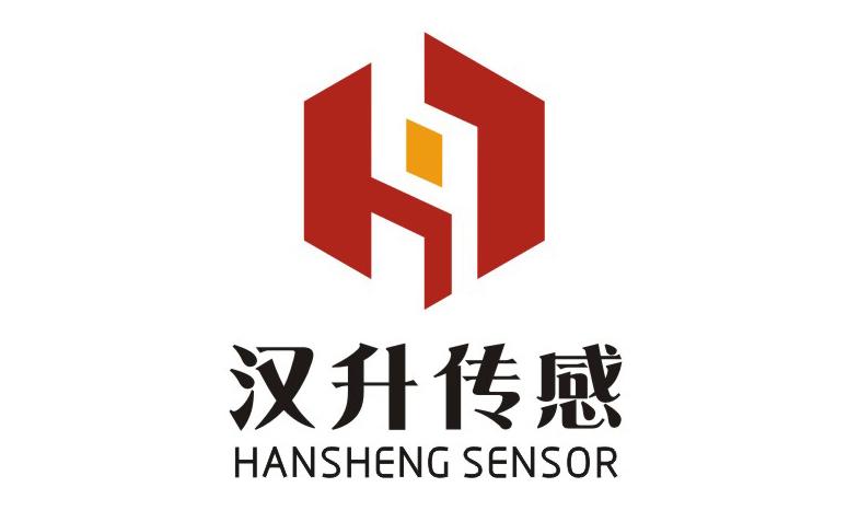 武汉汉升汽车传感系统有限责任公司